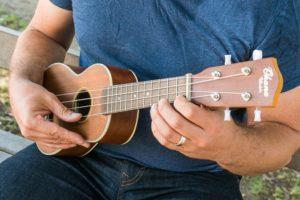 copyright www.ukulele-perspective.com